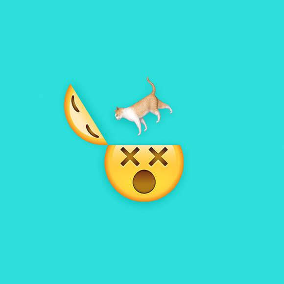 icon-design-katerfruehstueck-sony-music-reeperbahn-festival-musclebeaver
